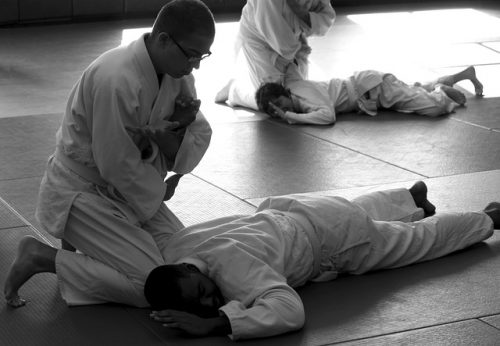 Great Martial Arts Mat