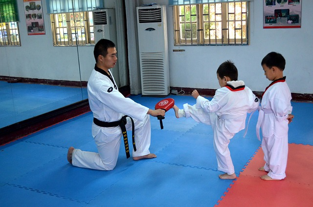 Martial Arts Jigsaw Mats Can Be Performance Enhancement